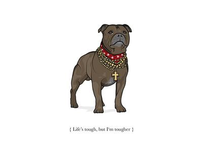 Mr T tough illustrator sketch staffy pet chains illustration digital dog