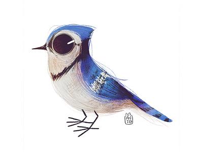 Cute Birds: Bluejay cute animal cute bluejay bird logo art digital procreate digital painting digital art digitalart illustration children