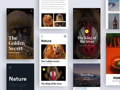 Content App ux  ui ux mobile app animals nature content