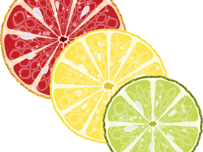 Citrus slices in the section vector illustration design citrus circles citrus slices grapefruit lime lemon