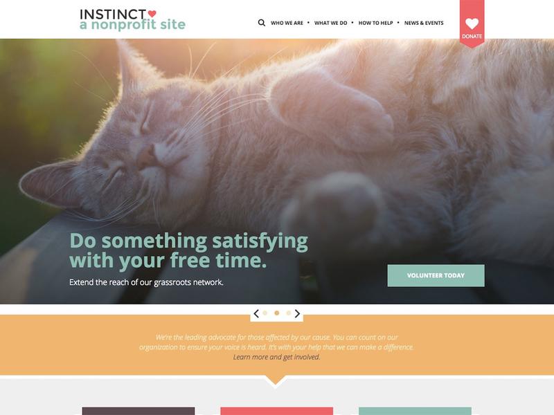 Saas Template Themes for Non-Profits saas design saas design web
