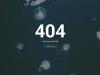 404 error page for fisherman website