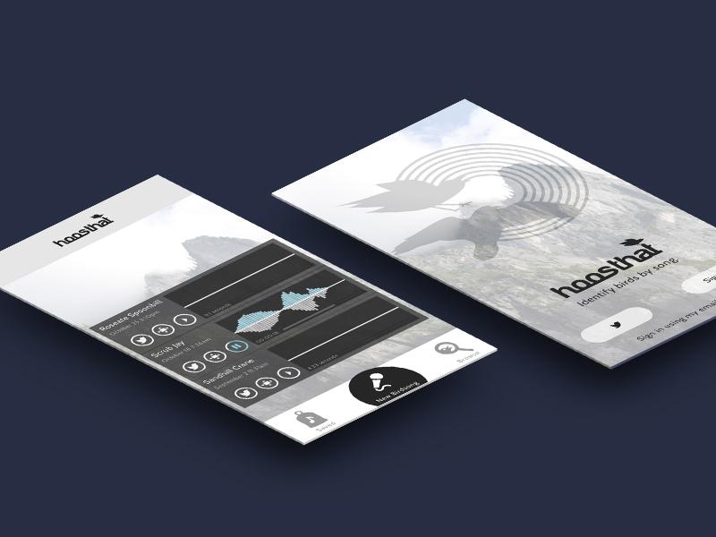 Hoosthat Shot app design soundwave birds mock-up app screen perspective sounds