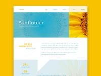 Sunflowerinc