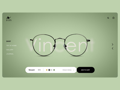 Iris web ui photography specs eye branding ux flat paviart web ui app website illustration design