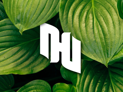 DD or DHD or IHI Monogram Preview