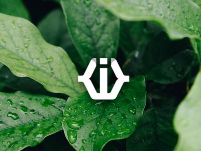 W or KWK or KIK Monogram Preview