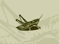 Dribbble Grasshopper Logomark