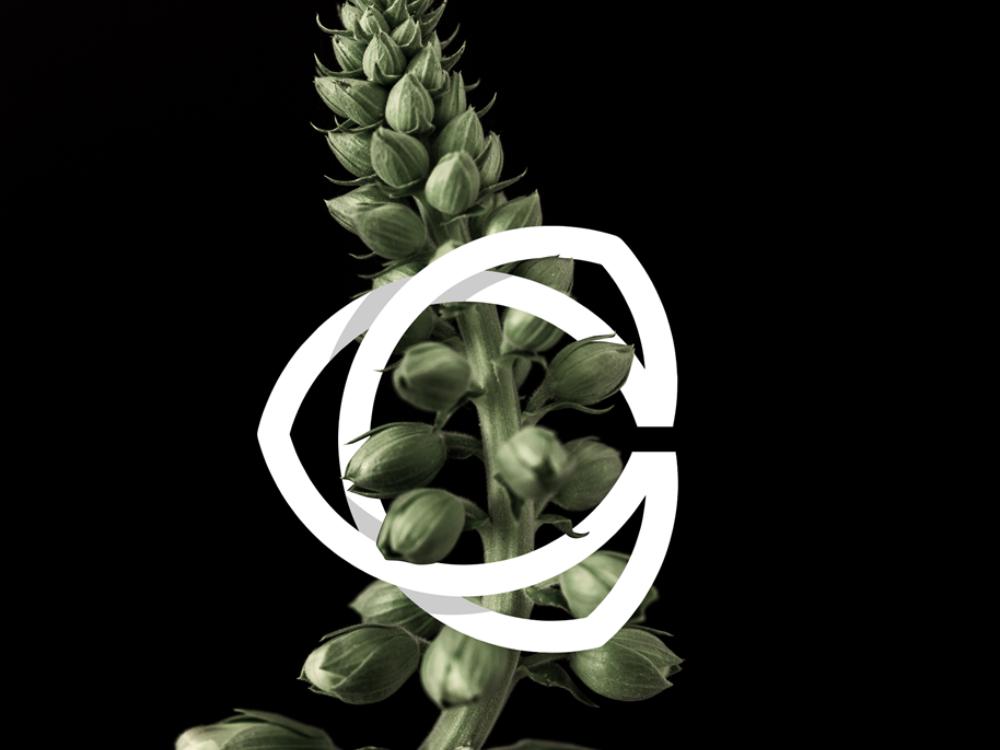 C or Cc Monogram Preview forsale letter graphicdesign logoforsale initial sale monogram logo monogram logotype vector identity logomark brand branding brandmark logogram logo icon symbol mark