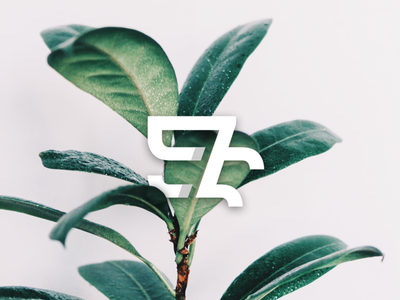 57 or EZ Monogram Preview