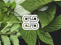 83 Monogram Preview