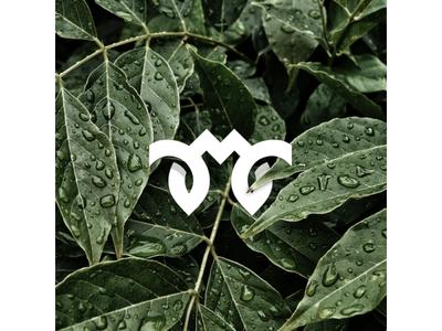 M Leaf Monogram Preview