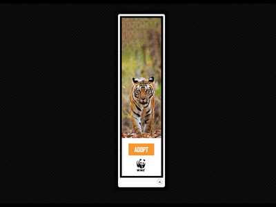 World Wildlife Fund (UK) code photoshop layouts social media socialmedia world wildlife fund wwf layout iab html5 gsap google studio design coding brand banners ads