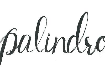 Palindrome hand lettering jensenwarner lettering