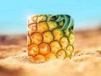 PineApp Icon