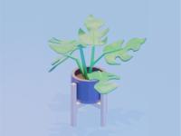 Monstera Lowpoly 3dart illustration render 3d plant monstera