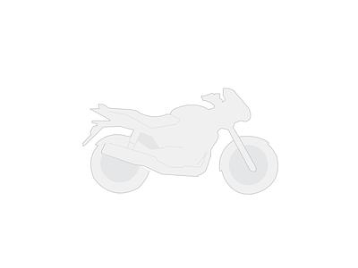 The Ride ride bike