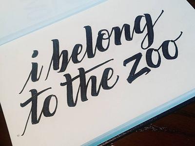 I Belong To The Zoo Album Custom Lettering script logotype sketch hand drawn type custom typography handlettering lettering custom lettering