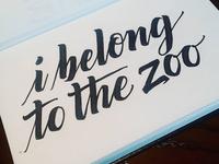 I Belong To The Zoo Album Custom Lettering