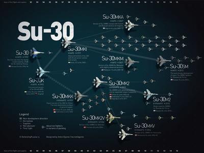 Su-30 family infographic