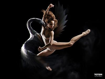 Totem - 1 totem soul sports low poly ballet dance swan mascot spirit animal