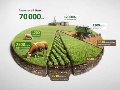 Infographic Agro Chart Illustration (data visualization) illustration matte retouch diagram infographics visualization infographic data chart harvester mattepainting grass wheat potato cow sheep farm agro cut annual report view plot graphic graph information info aerial compositing rural