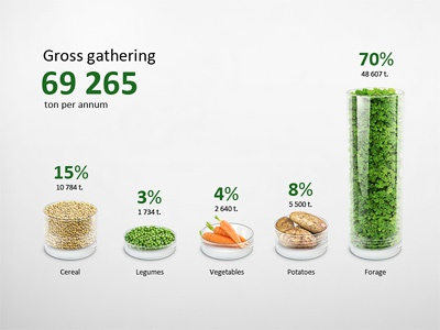 Infographic Gross gathering Chart Illustration illustration retouch diagram infographics 3d glass visualization data infographic chart cereal wheat peas carrot potato forage annual report info graphic information plot graph