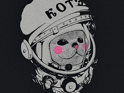 Котэ-космонафтэ fun kote space gagarin cat april 12 1961 cosmonaut helm