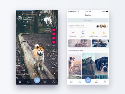 Pamily App cat dog camera app pet video