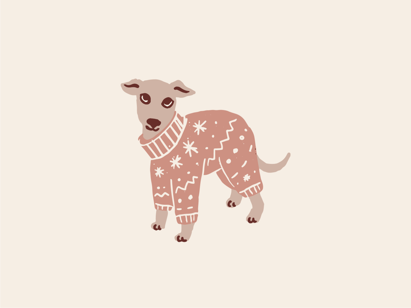 Stay at home whippet pets christmas vector cute jumper pajamas dog illustration
