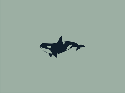 Orca conservation animal minimalistic simple line ocean whale orca illustration