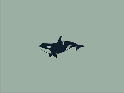 Orca conservation animal minimalistic simple line ocean whale orca illustration