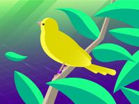 Datadog / PagerDuty Canary Release
