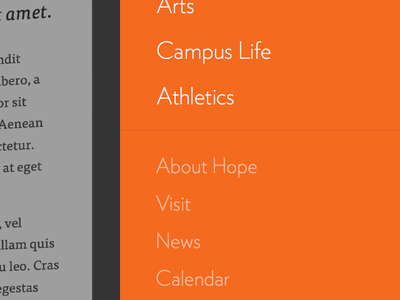 Hope College higher education modern university parallax college blur typography grid education color clean