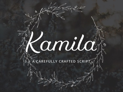 Kamila - Webfont & Desktop Font script typeface script typography webfont type design typeface font