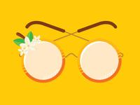 Sunnies For Sunny Fla