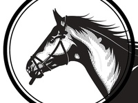 Horse exploration 1