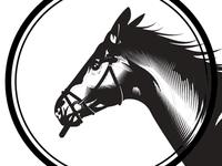 Horse Illustration exploration