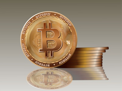 bitcoin bitcoins coin gold logo illustration bitcoin wallet bitcoin