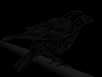Day 15 – Raven comic animal night dark bird raven illustration 30daychallenge
