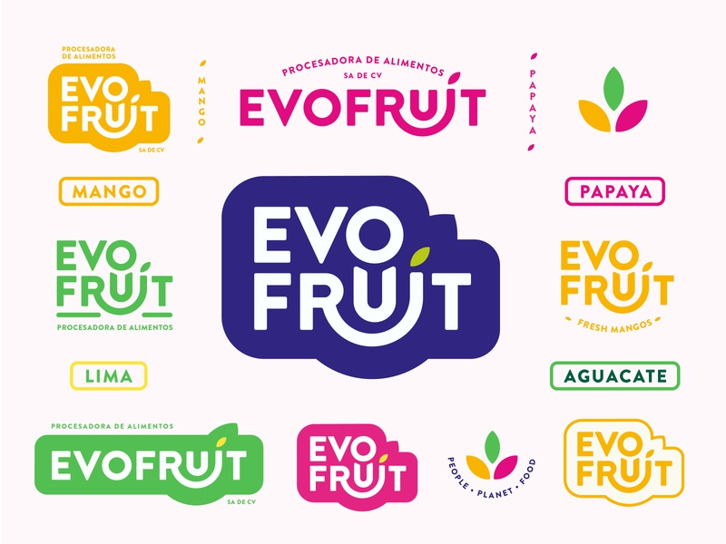 Evofruit Brand Identity tropical leaves branding brand identity identity magnolia avocado papaya mexico san antonio tropical fruit fruit