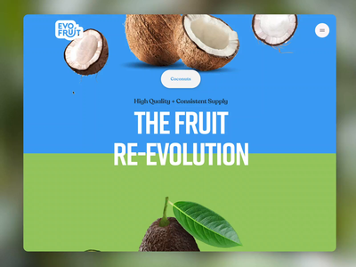 Evofruit Website idenity branding limes evofruit coconut mango avocado fruit tropical fruit brand design website design