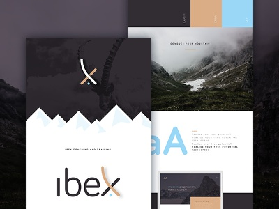 Brand development guidelines x wordmark mark logo ibex graphic design gold goat branding blue