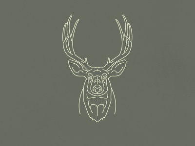 Oh deer...  line work nature outdoors camping wild illustration animal mono line deer