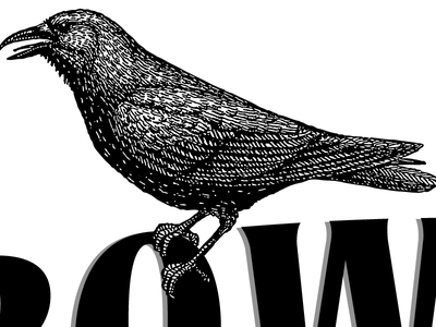 Crow crow illustration vector typography black and white