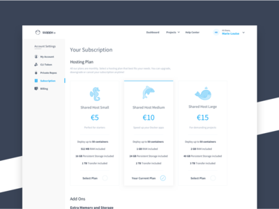 Sloppy.Io Subscriptions white blue pricing storage memory subscription plans payment ux ui dashboard clean