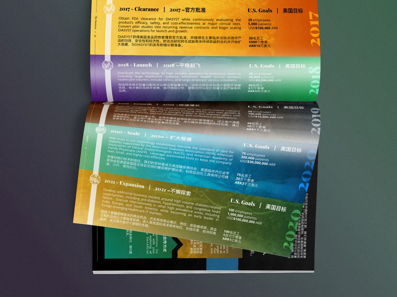 Dual Language Investment Booklet asia china chinese print typography sales investor investment magazine booklet brand design diabetes