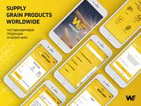 wexport app