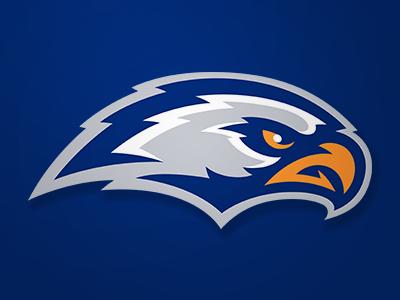 Eagles sports logo concept eagle hawk