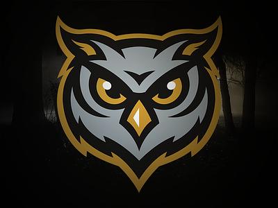 Owls owls sports logo concept night hoot